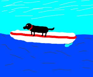 dog drowns