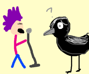 punk music plays while birb looks bamboozled