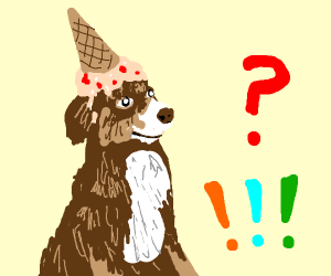 Dog with Pink ice cream on head