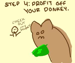 Step 3: ride the donkey