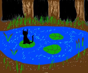 black cat on lily pad
