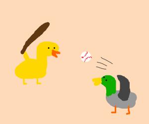Ducks play baseball