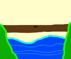 Spider crossing a log-bridge