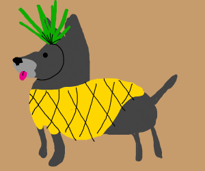 Dog in Pineapple Costume