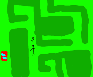 man lost his car in a giant hedge maze