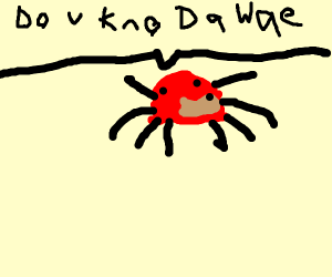 knuckles the spider