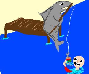 shark fishing for humans