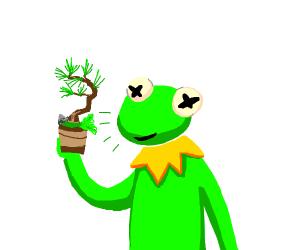 kermit holds a mini pine tree
