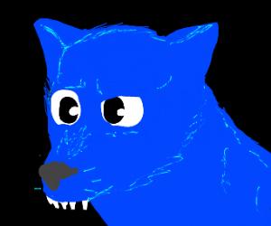derpy blue wolf