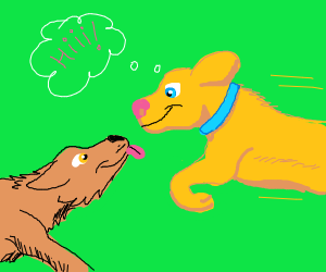 Dog greets another dog