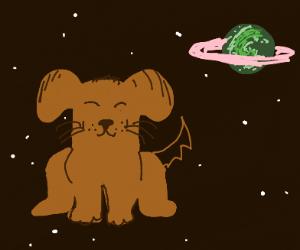 doggo in space