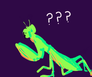 Confused Mantis