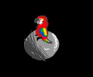 Parrotfish on the Moon