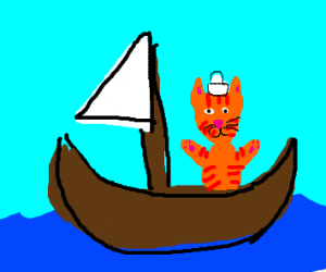 cat at sea