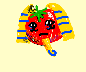 Egyptian Tomato
