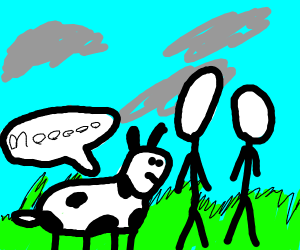cow and men