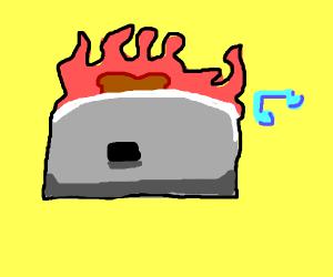 Burning Hitler Toaster