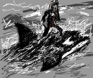 black whale surfing