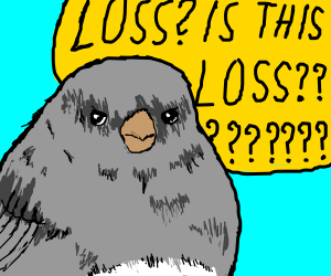 Bird wants to know if this is loss