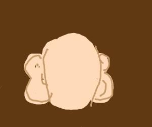 wrong sided ears