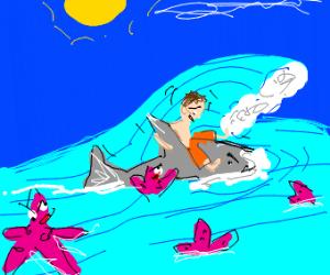 Shark saves man from star men