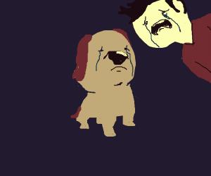 Sad puppy. no pls no