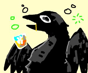 a drunk crow