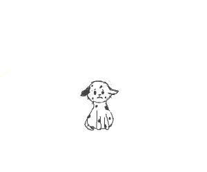 sad puppie