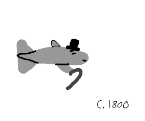Minnow from the 1800s