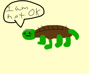 An old turtle who's not ok