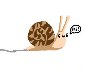 Snail says hi