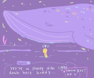 Whale calling someone kinda dim