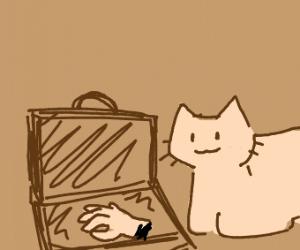 Cat has hand in case