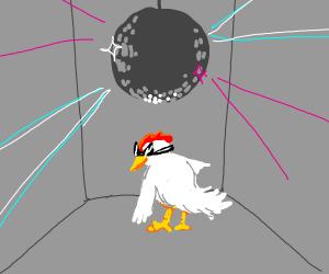 Disco chicken!