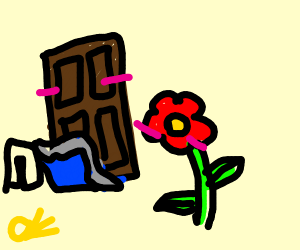 jar of a sofa or chocolate, and a flower