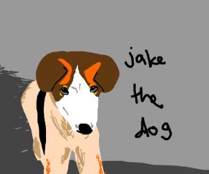 jake paul as a dog
