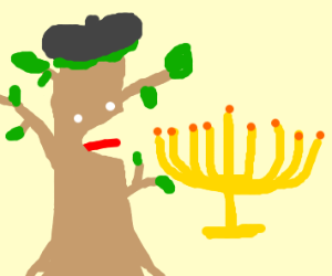 A tree wearing a beret yells next to a menora