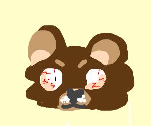 A bear on crack