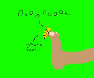a bee loves your foot