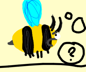 bee questioning how she can fly
