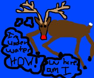 reindeer is lost underwater