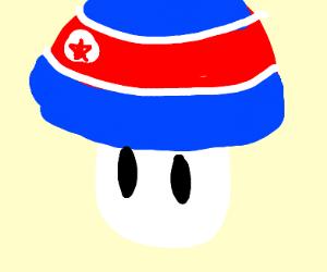 North Korea mushroom