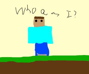Steve forgot his name