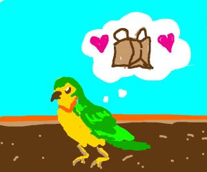Parakeet dreaming of a Bag