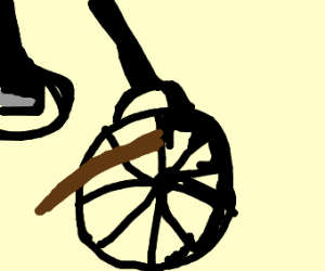 putting a stick in your bike wheel meme