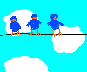 3 Birds on lines