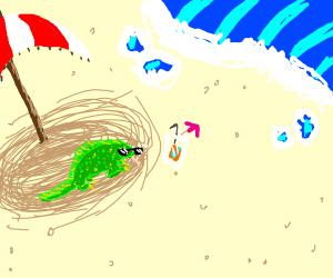 cool lizard on the beach