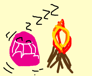 Jelly sleeping next to campfire
