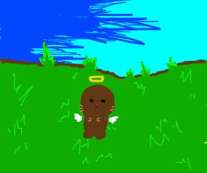 Angel otter