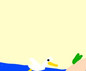 stork swimming close to island